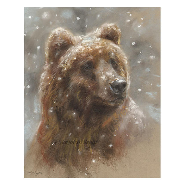 'Snowy bear', pastel painting (for sale)