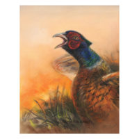 'Pheasant', pastel painting (for sale)