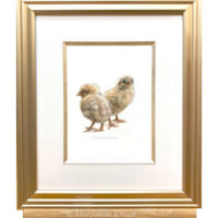 Chicks painting in watercolour (for sale)