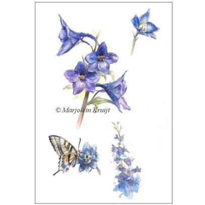 """Vlinder schilderij 'Koninginnepage met ridderspoor"""" door Marjolein Kruijt (te koop)"""
