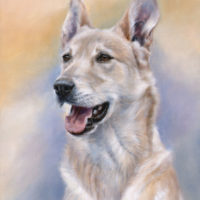 'Podenco'-Figor, 50x40 cm, oil painting (sold/commission)