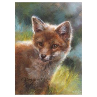 'Jonge vos', schilderij 18x13 cm, olieverf -€850 incl. lijst