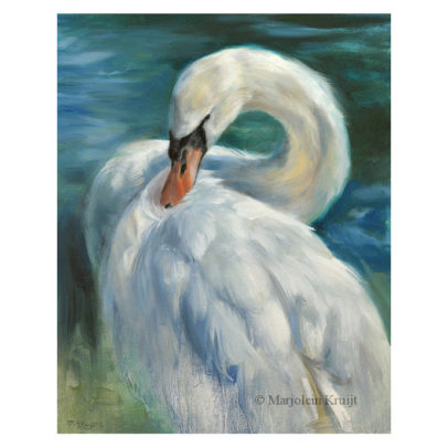 'Knobbelzwaan', 30x24 cm, olieverf schilderij (te koop)
