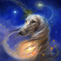 'the Love of dogs' -saluki, 13x13 cm, oil painting on panel (for sale)