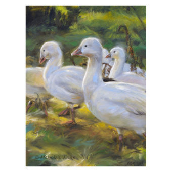 'Snow geese', 20x15 cm, oil painting (for sale)y fox Oil on panel 18×13 cm INCL. frame + FREE shipping