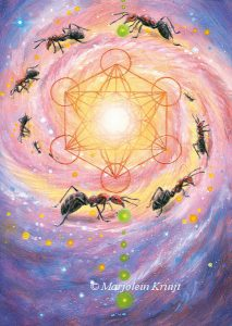 'Ant' -metatron cube, oil painting (published as oracle card)