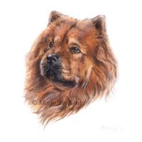 'Chowchow', miniature portrait , 10x10 cm (sold)