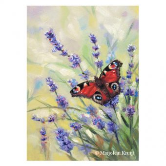 Peacock butterfly on lavender incl .frame