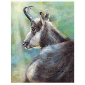 'Chamois', oil on panel, 18x13 cm (for sale)