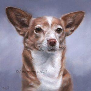 'Moenie', 20x20 cm, oil painting (sold)