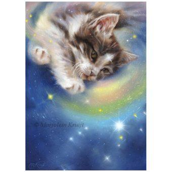 'Release' -Kitten/Orion, 30x22 cm, oil (for sale)