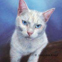 'Snoezepoes', 24x18 cm, oil portrait (sold/commission)