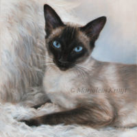 'Siamese', 40x30 cm, oil painting (sold)
