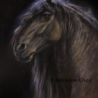 'Freasian horse portrait', free painting in oil (sold)