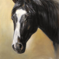 'Portrait horse', painting in commission [close-up ca. 60x50 cm] (sold)