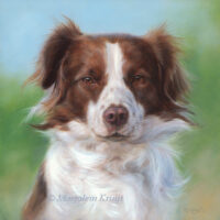 'Scotty', 20x20cm, oil painting (sold/commission)