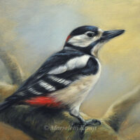 'Great spotted woodpecker', painting 18x24 cm, (for sale)