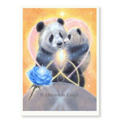 'Panda' - limited edition print