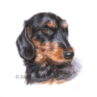 'Dachshund'-coco, portret 10x10 cm, acrylic on paper (sold)