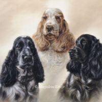 'Cocker spaniels', oil painting 50x60 cm (commission/sold)