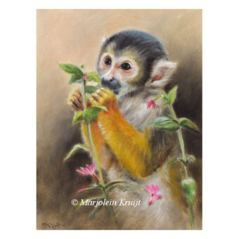 'Squirrel monkey', 20x15 cm, oilpainting (for sale)