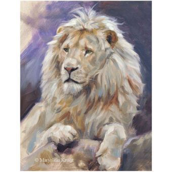 'White lion', 24x18cm, oil on panel (for sale)