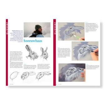 Free Download how to paint a snowhare step-by-step instructional